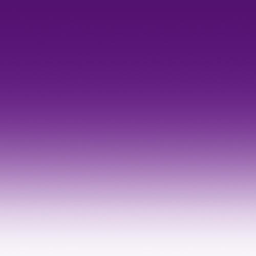 Viola sfumato specchiato