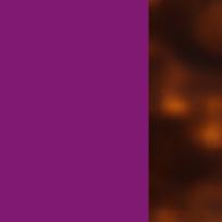 Viola - avana chiara