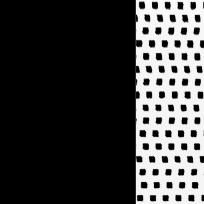 Nero - nero puntinato