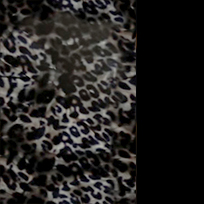 Argento maculato - nero lucido