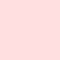 Rosa opalino